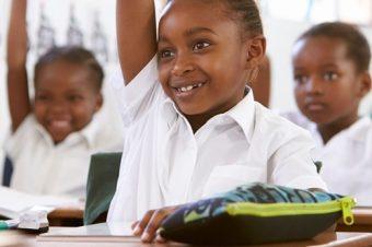 Educação para a cidadania e o desenvolvimento na escola