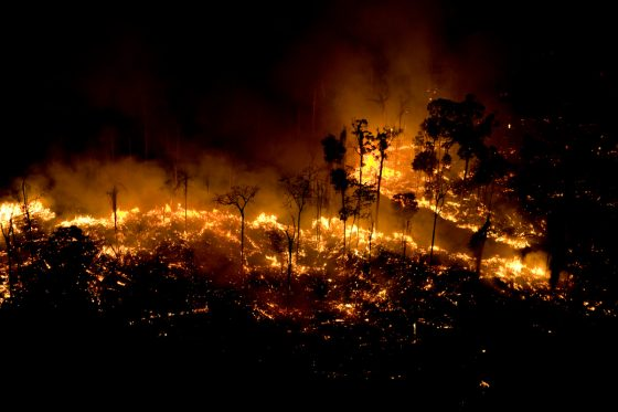 Amazónia exige novo paradigma