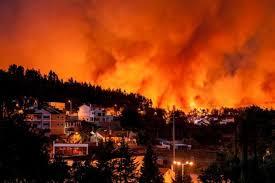 Antigamente não havia incêndios florestais?
